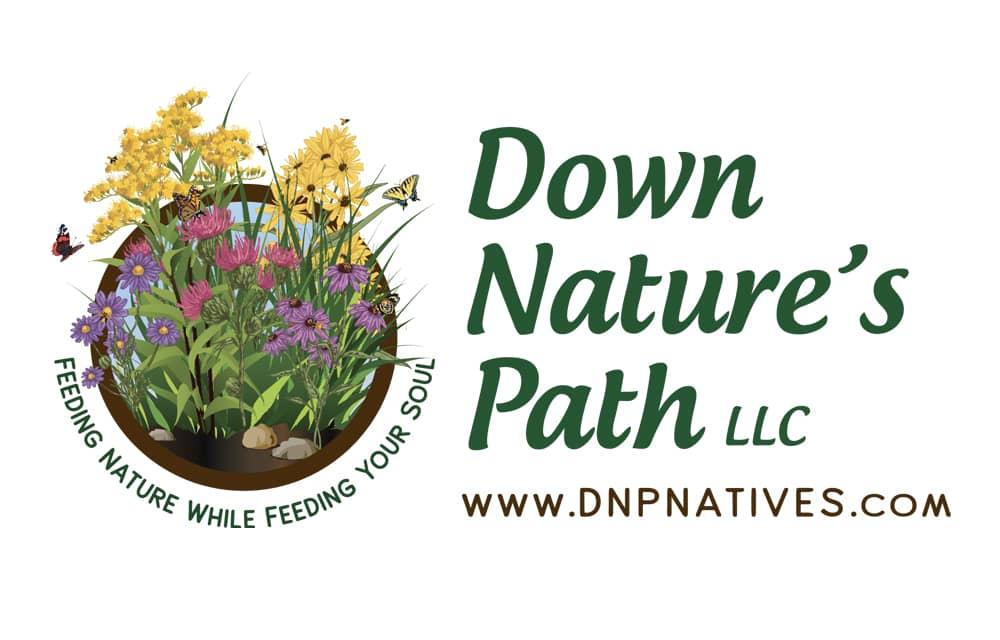 Down Nature's Path | Welborn Creative