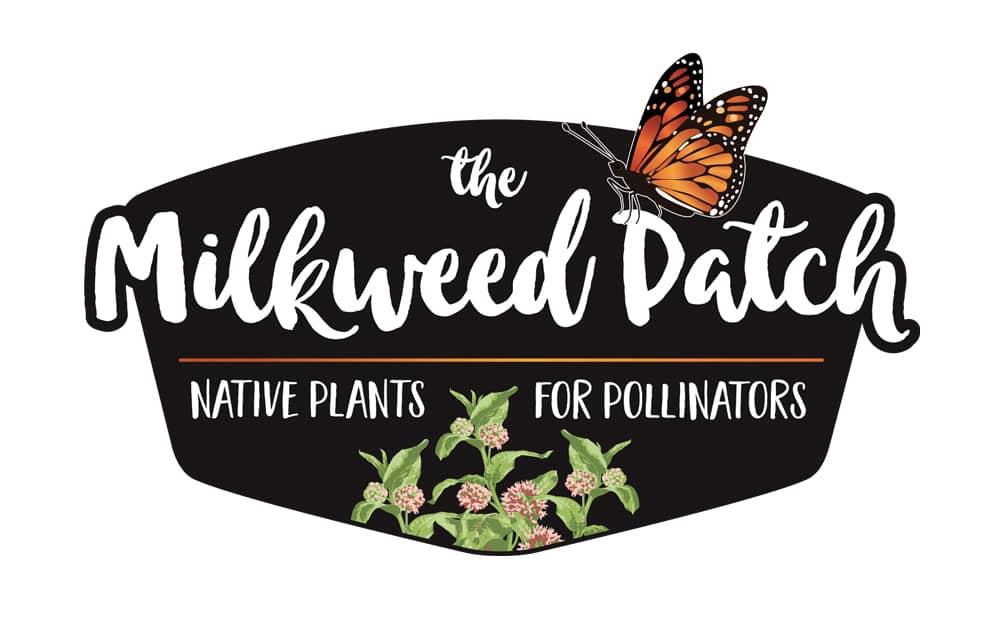 The Milkweed Patch | Welborn Creative